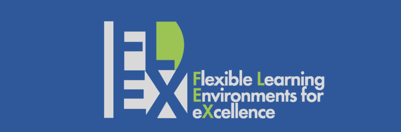 FLEX - Flexible Learning Environments for Excellence - Logo